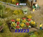 13223 Noch Rose Bed, 12 plants, H0